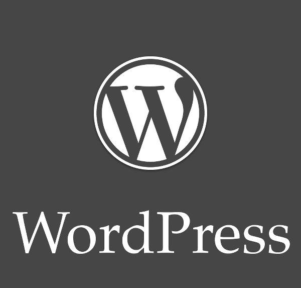 آموزش نکات و تکنیک های برنامه نویسی وردپرس